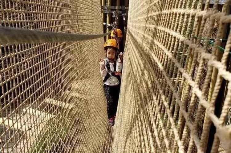 口袋屋拓展探险乐园类型——考拉丛林.jpg
