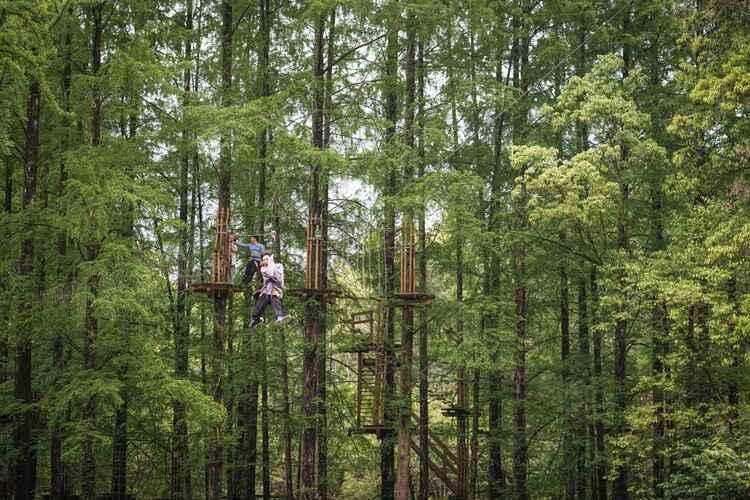 丛林穿越.jpg