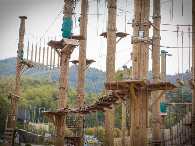 口袋屋丛林穿越探险乐园