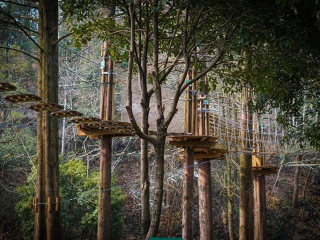 口袋屋空中荡木桥对儿童有哪些好处?