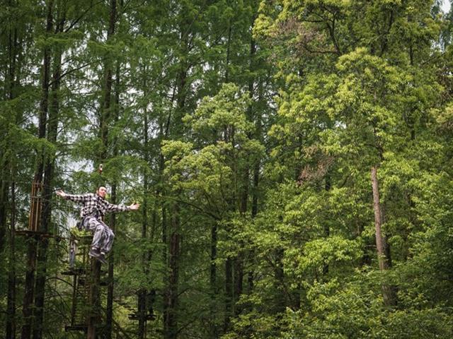树上拓展、丛林穿越、森林探险有什么器材设备,怎么玩?