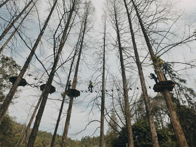 景区丛林探险的可玩性强吗,为什么这么火?